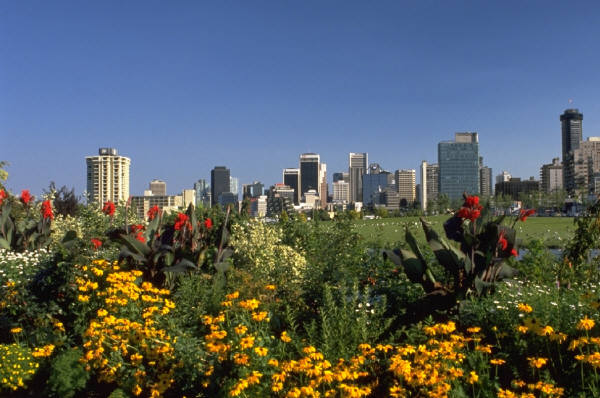 city and flower garden