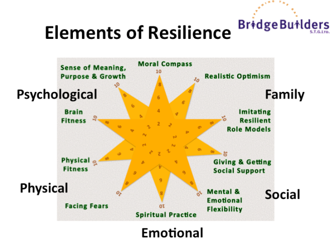 Southwick & Charney's 10 Essential Resilience Capabilities mapped to 5 dimensions  Mark Trezona (C)