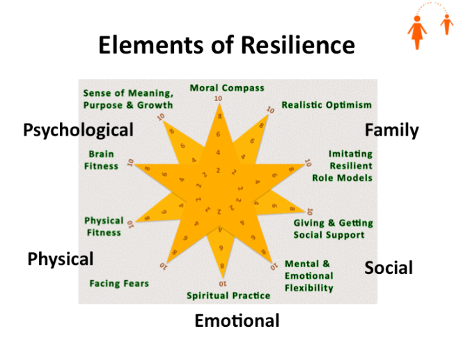 5 Dimensions of Resilience mapped onto Southwick & Charney's 10 Essential Capabilities (Mark Trezona 2014)