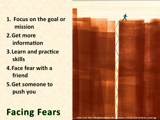 Moving Forward: Facing Fears, Resilience Capability #2
