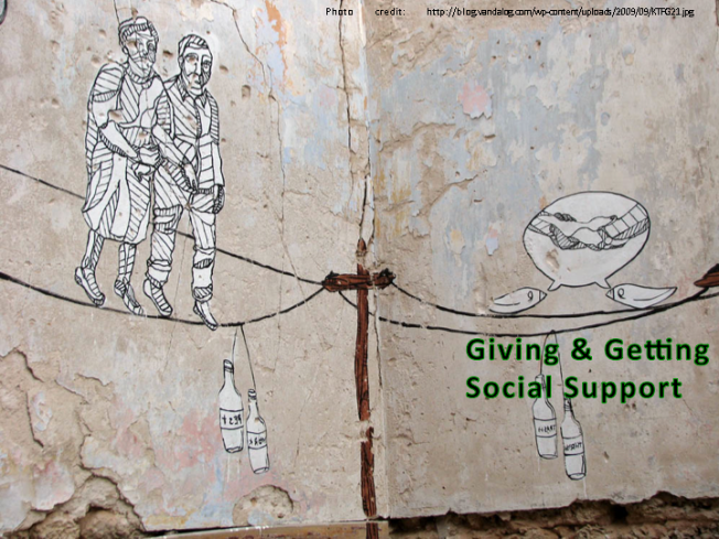 Giving & Getting Social Support, Resilience Capability #5
